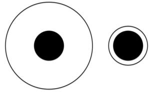 delboeuf-illusion-image